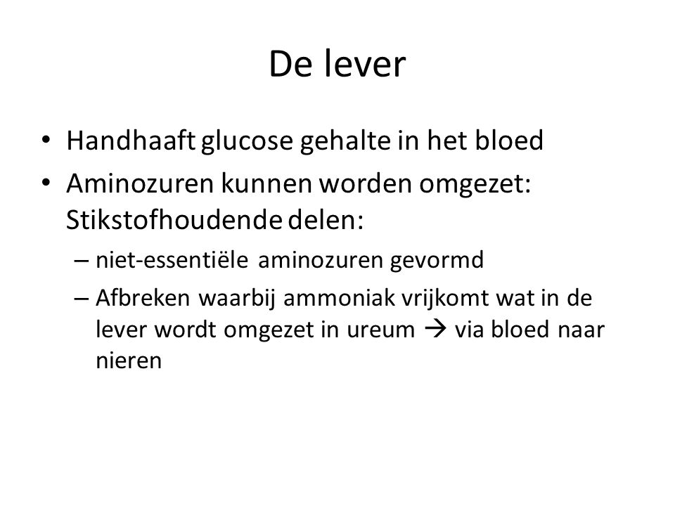 De lever Handhaaft glucose gehalte in het bloed