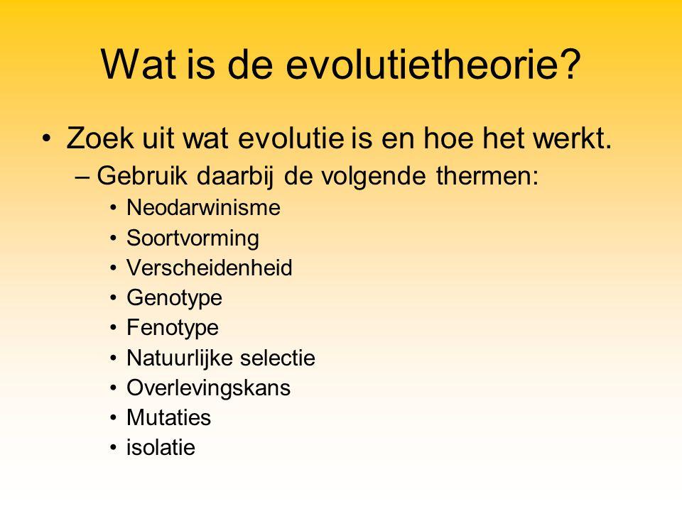 Wat is de evolutietheorie