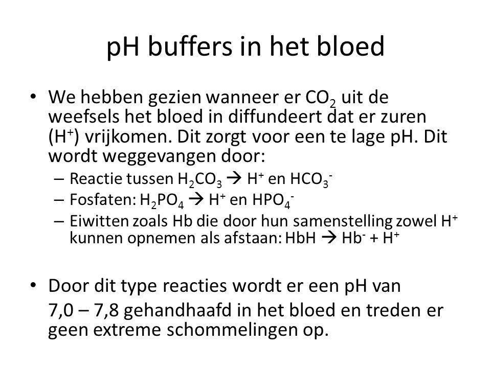 pH buffers in het bloed