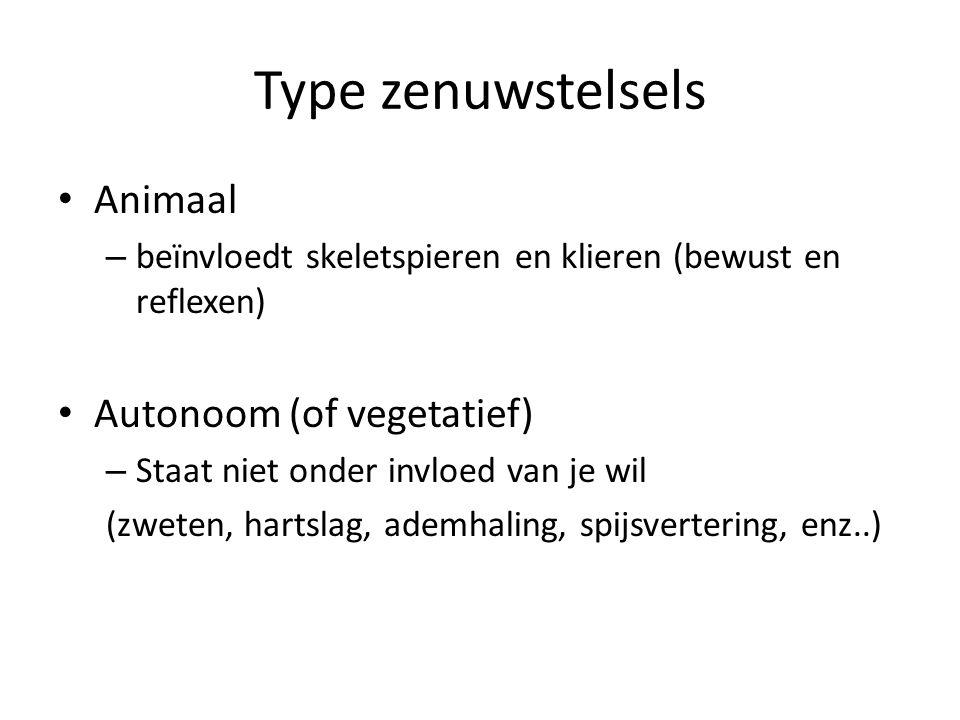 Type zenuwstelsels Animaal Autonoom (of vegetatief)