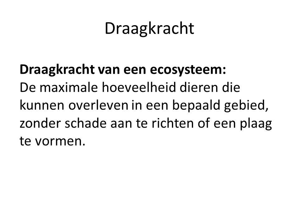 Draagkracht Draagkracht van een ecosysteem: