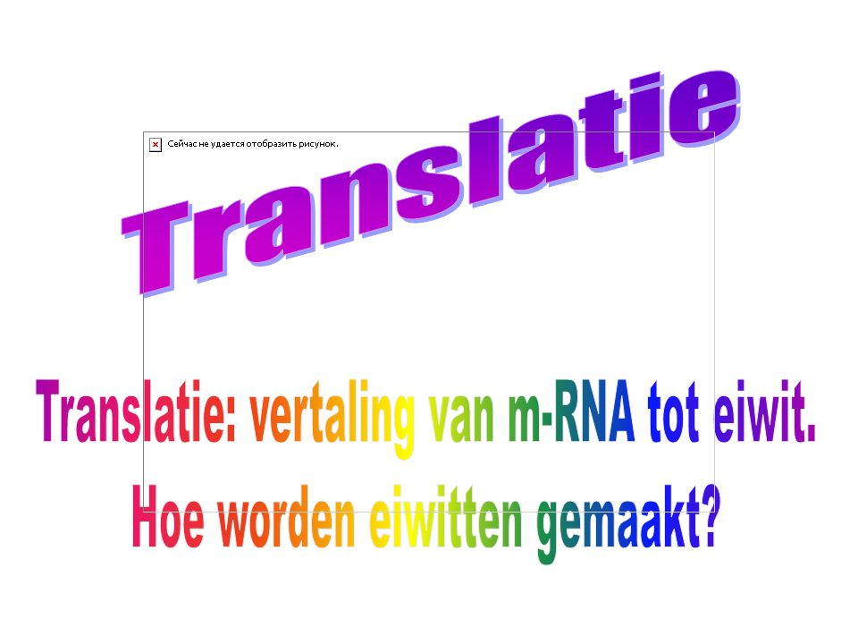 Translatie: vertaling van m-RNA tot eiwit.