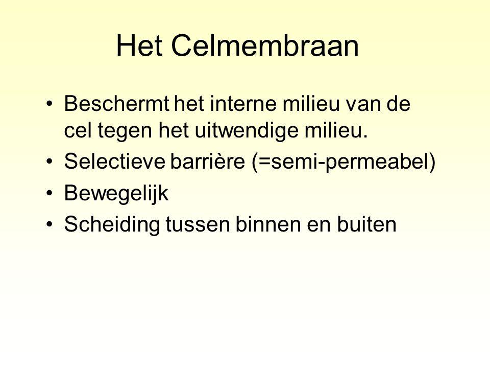 Het Celmembraan Beschermt het interne milieu van de cel tegen het uitwendige milieu. Selectieve barrière (=semi-permeabel)