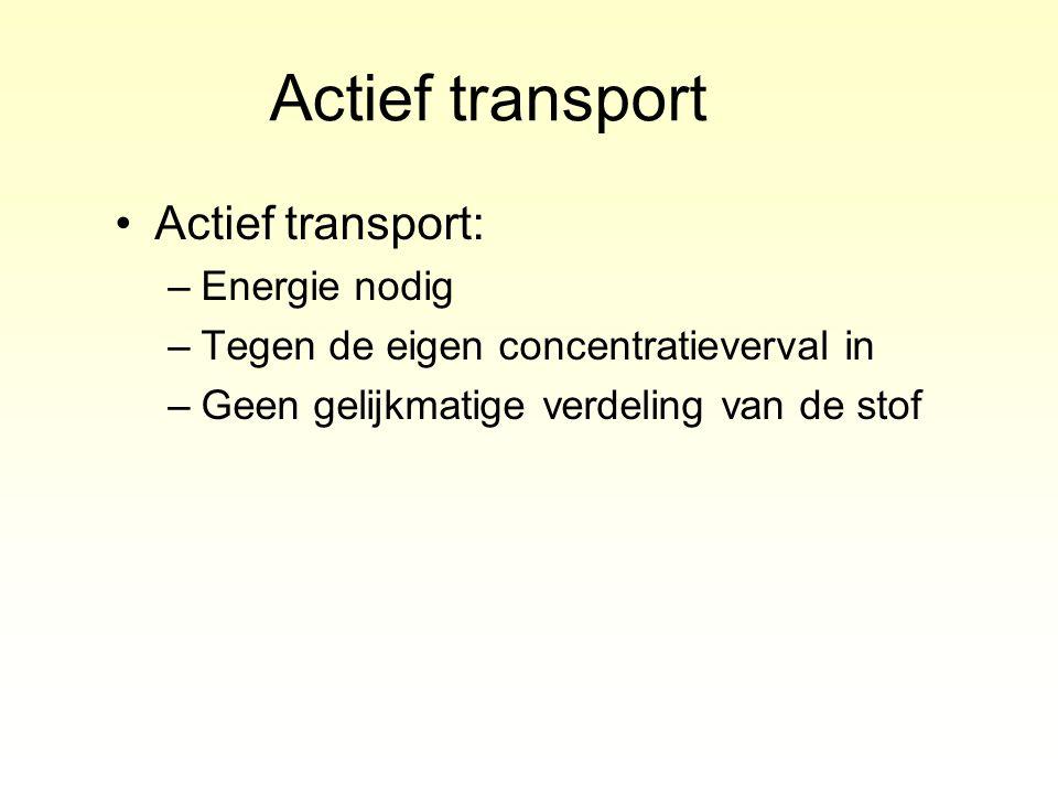 Actief transport Actief transport: Energie nodig