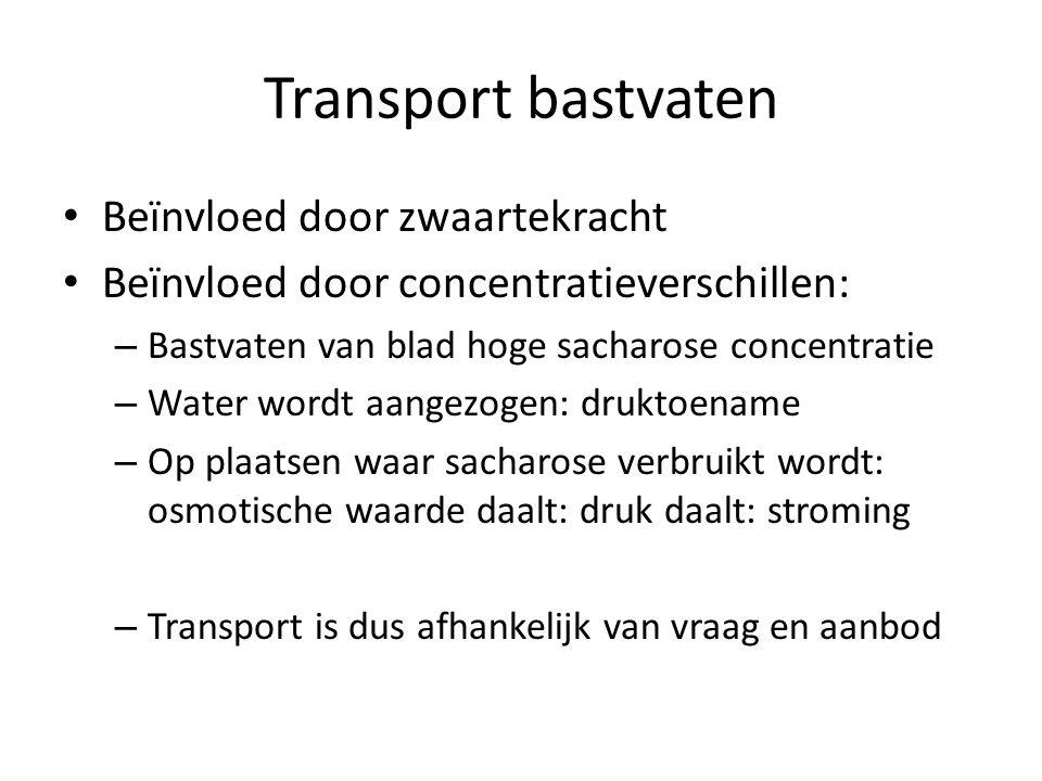 Transport bastvaten Beïnvloed door zwaartekracht