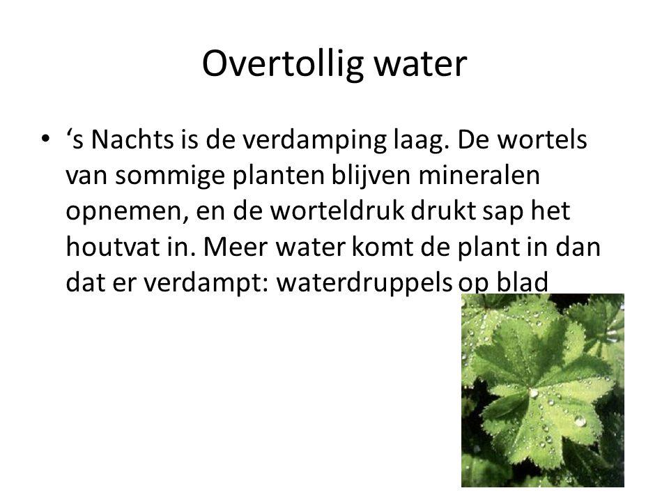 Overtollig water