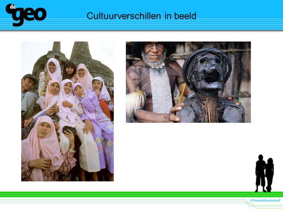 Cultuurverschillen in beeld