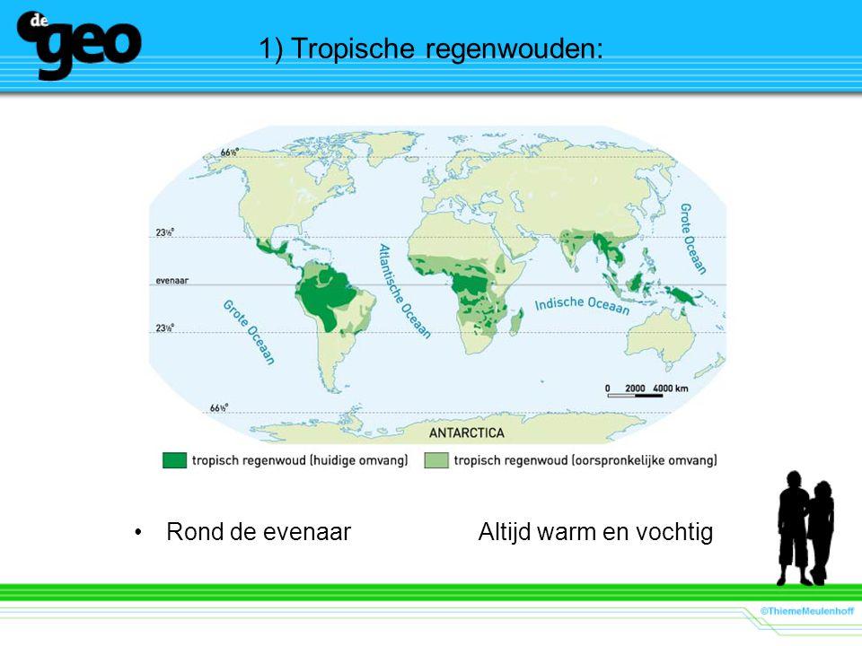 1) Tropische regenwouden: