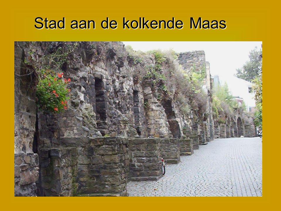 Stad aan de kolkende Maas