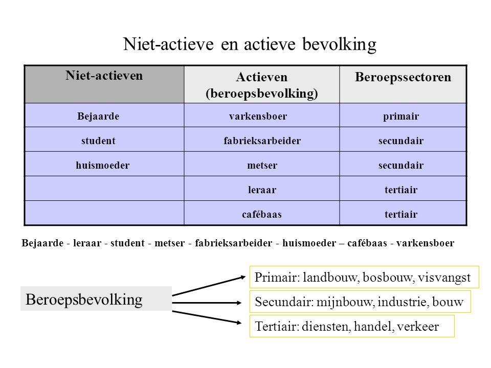 Niet-actieve en actieve bevolking