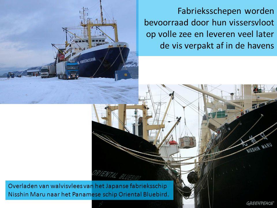 Fabrieksschepen worden bevoorraad door hun vissersvloot op volle zee en leveren veel later de vis verpakt af in de havens