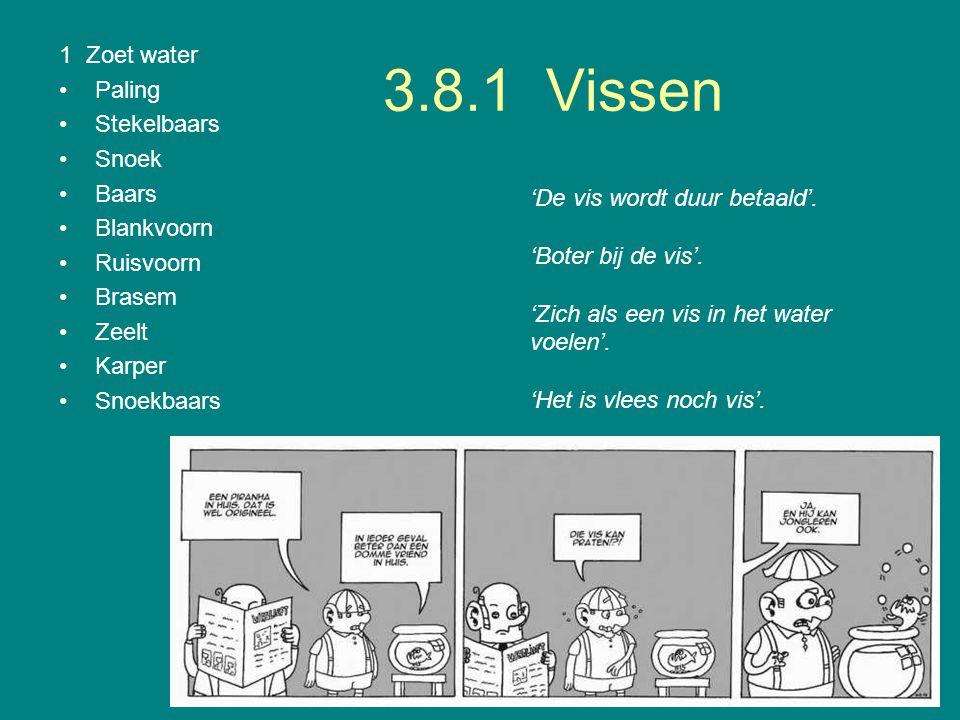 3.8.1 Vissen 1 Zoet water Paling Stekelbaars Snoek Baars Blankvoorn