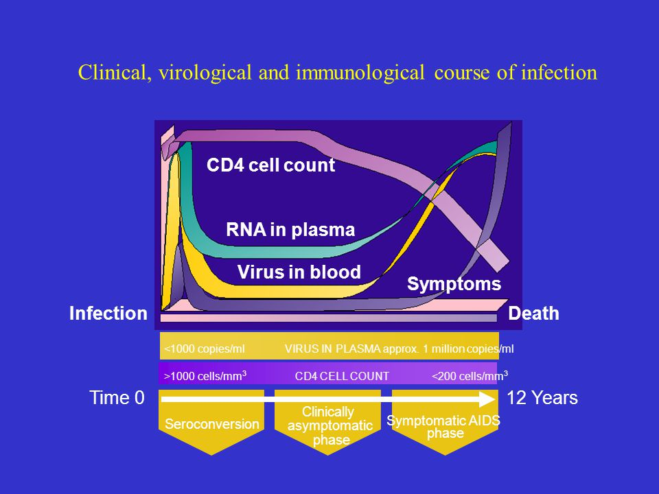 Clinical, virological and immunological course of infection