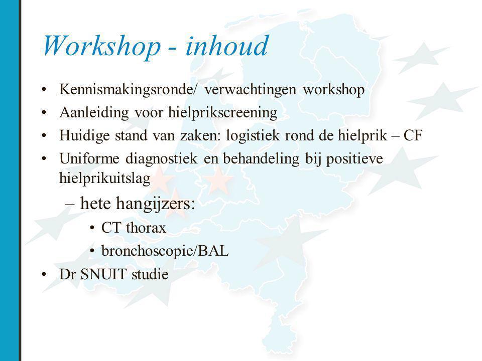 Workshop - inhoud hete hangijzers:
