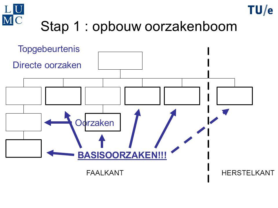 Stap 1 : opbouw oorzakenboom