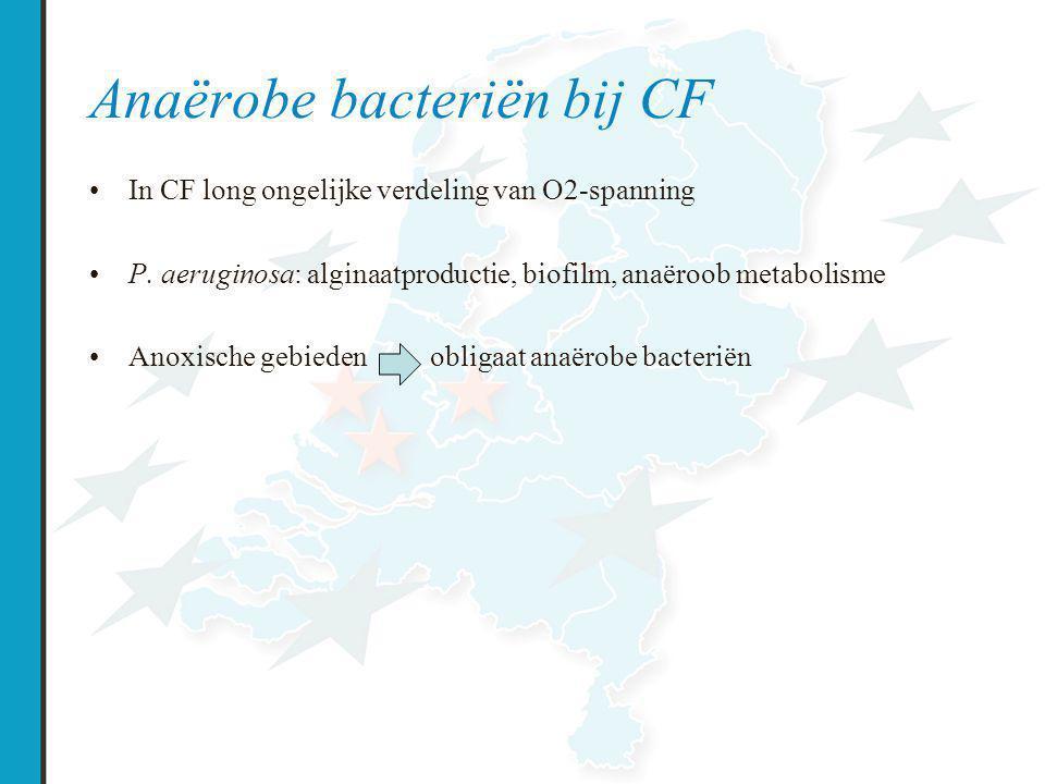 Anaërobe bacteriën bij CF