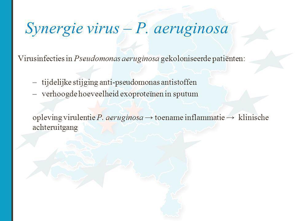 Synergie virus – P. aeruginosa