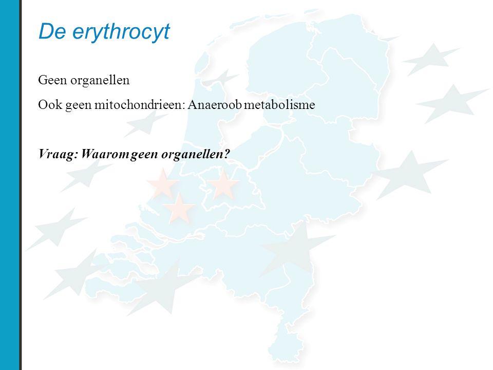 De erythrocyt Geen organellen