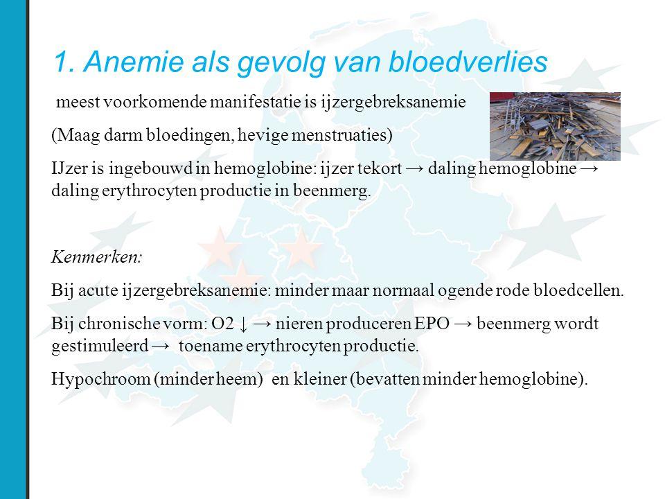 1. Anemie als gevolg van bloedverlies