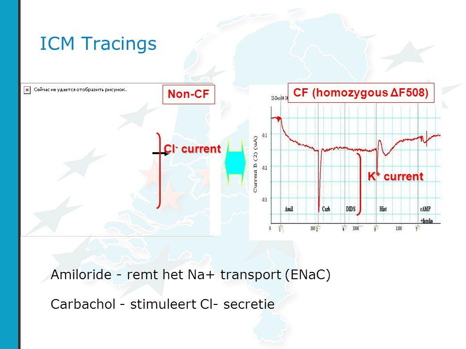 ICM Tracings Amiloride - remt het Na+ transport (ENaC)