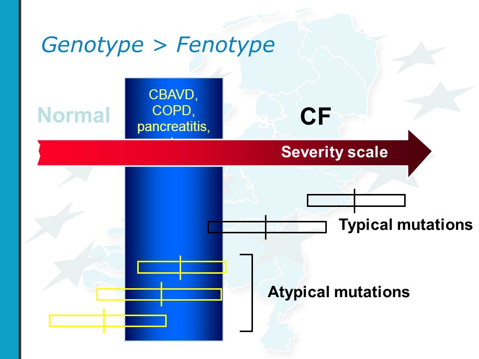 Genotype > Fenotype