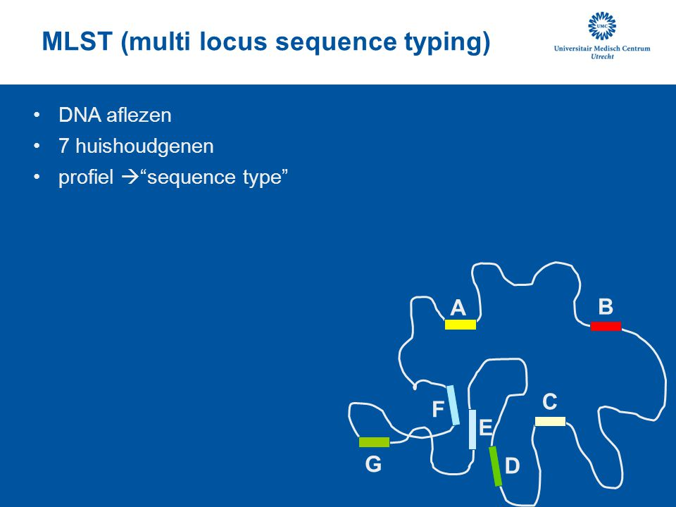 MLST (multi locus sequence typing)