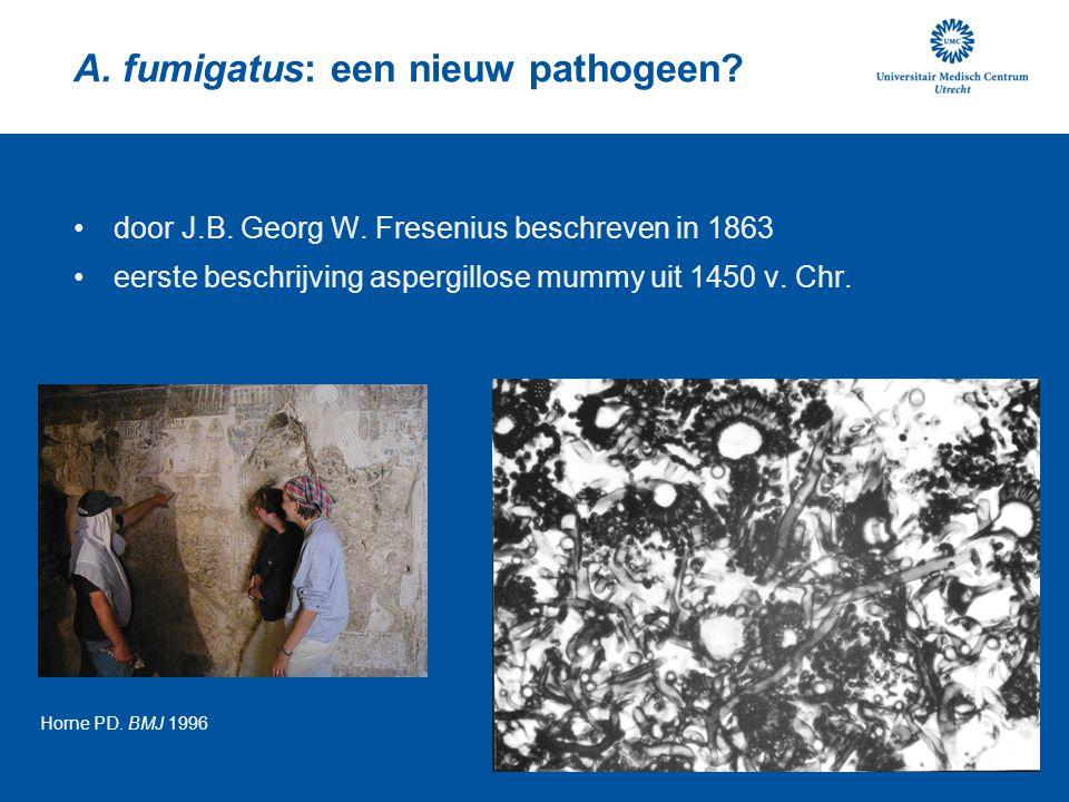 A. fumigatus: een nieuw pathogeen