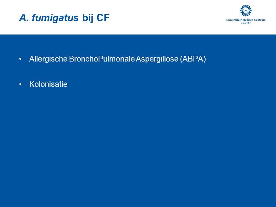 A. fumigatus bij CF Allergische BronchoPulmonale Aspergillose (ABPA)