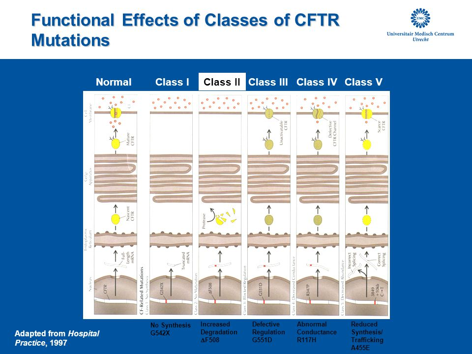 Functional Effects of Classes of CFTR Mutations
