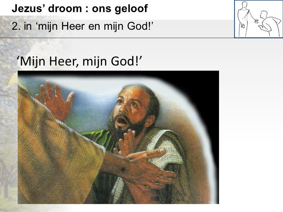 'Mijn Heer, mijn God!' Jezus' droom : ons geloof