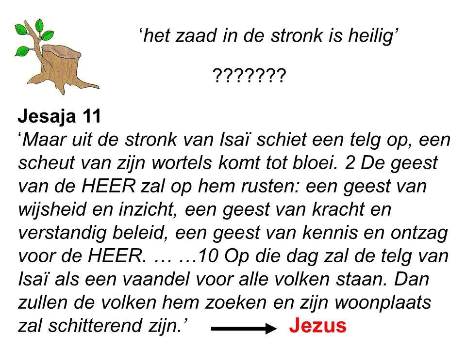 Jezus 'het zaad in de stronk is heilig' Jesaja 11