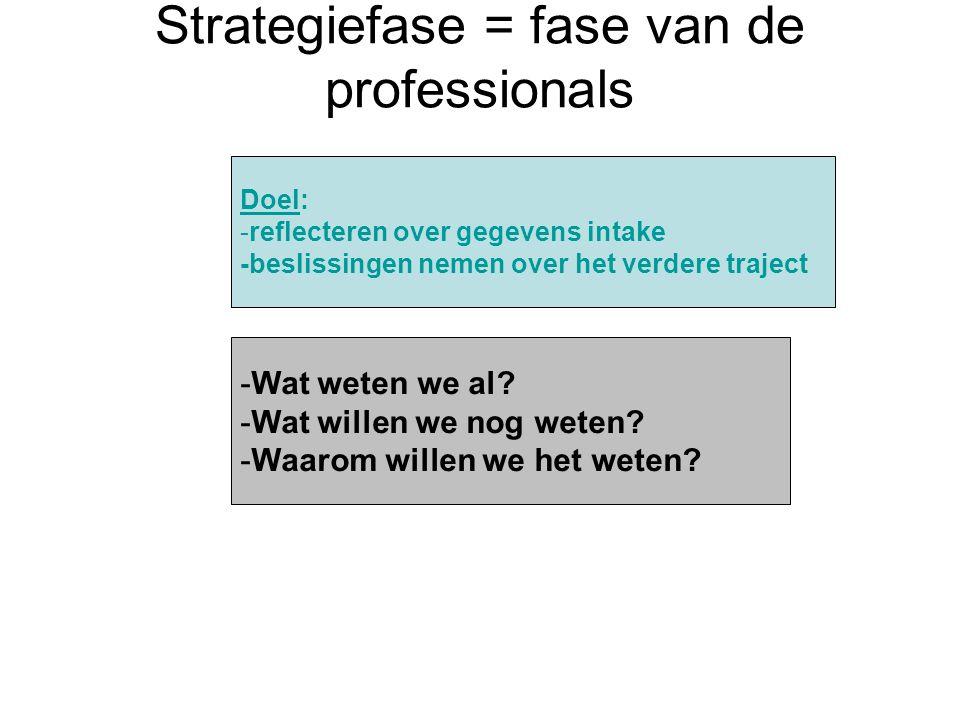 Strategiefase = fase van de professionals