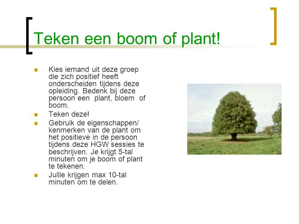 Teken een boom of plant!