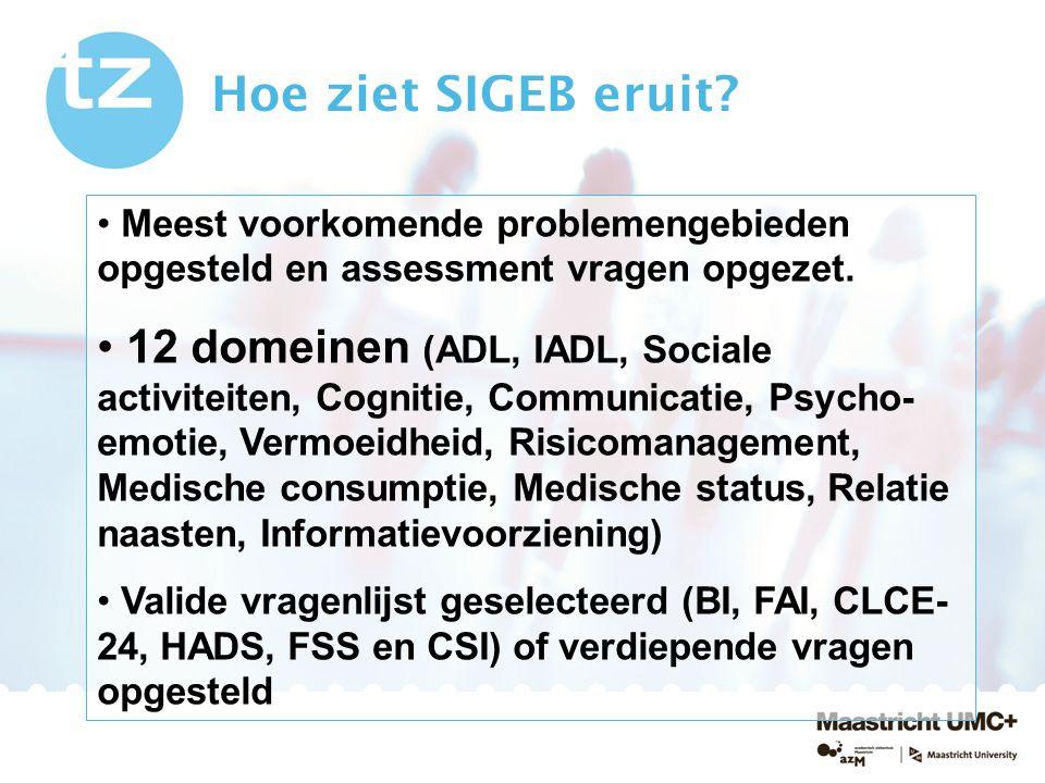 Hoe ziet SIGEB eruit Meest voorkomende problemengebieden opgesteld en assessment vragen opgezet.