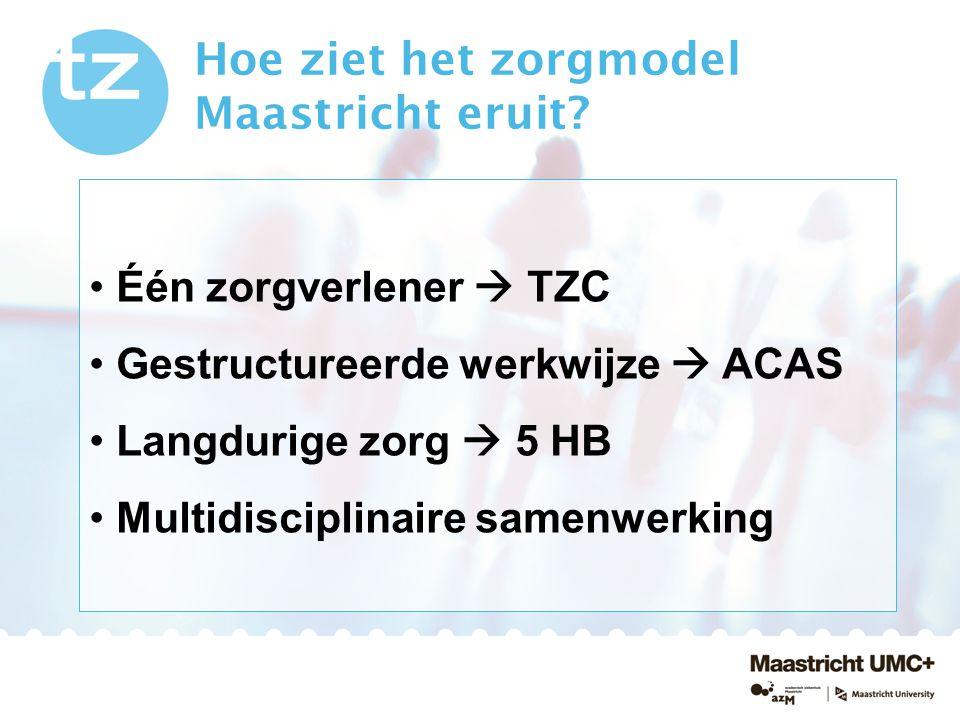 Hoe ziet het zorgmodel Maastricht eruit