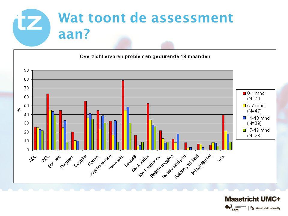 Wat toont de assessment aan