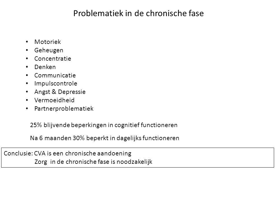 Problematiek in de chronische fase