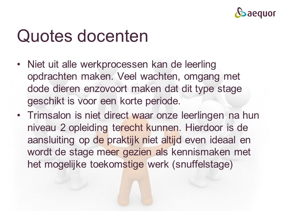 Quotes docenten