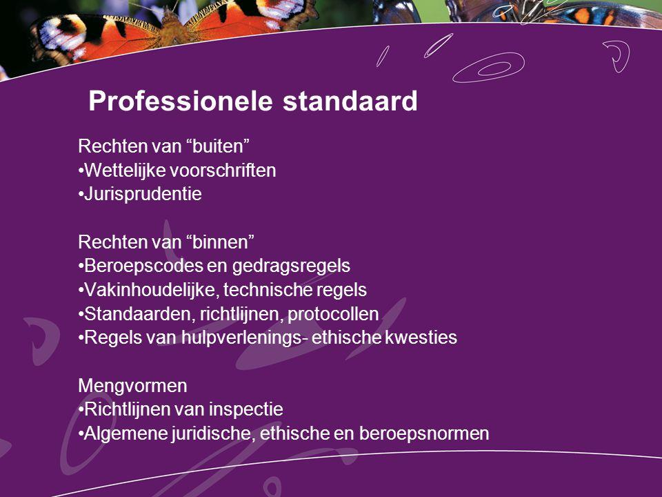 Professionele standaard