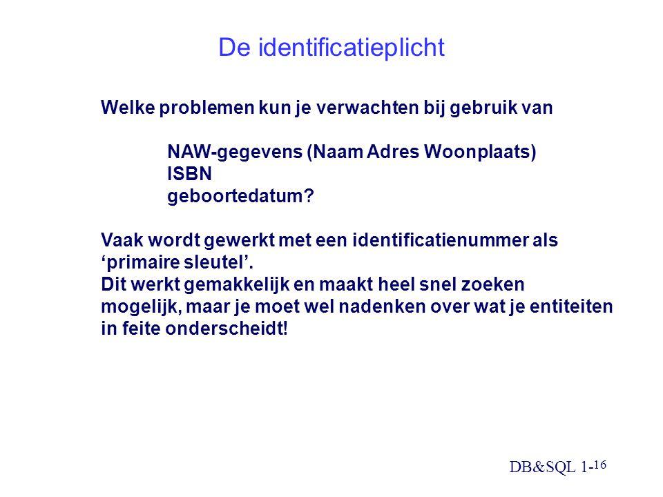 De identificatieplicht
