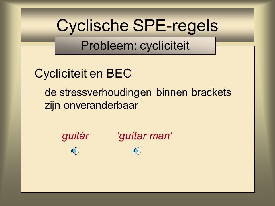 Probleem: cycliciteit