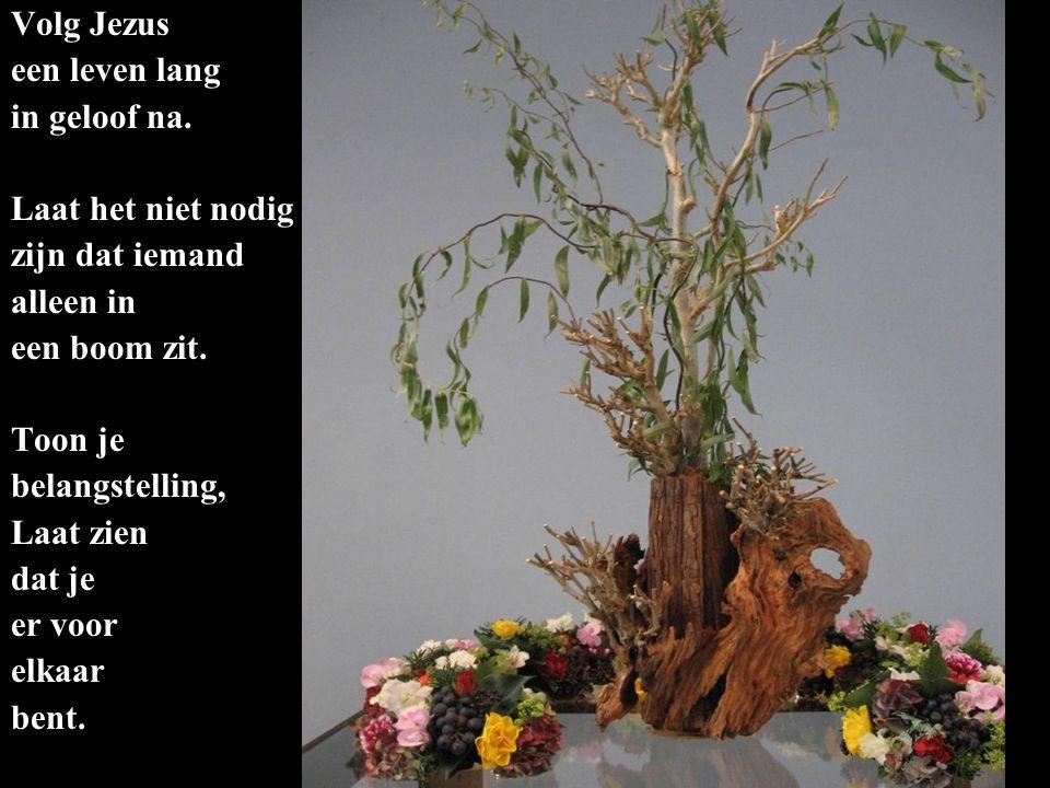 Volg Jezus een leven lang. in geloof na. Laat het niet nodig. zijn dat iemand. alleen in. een boom zit.
