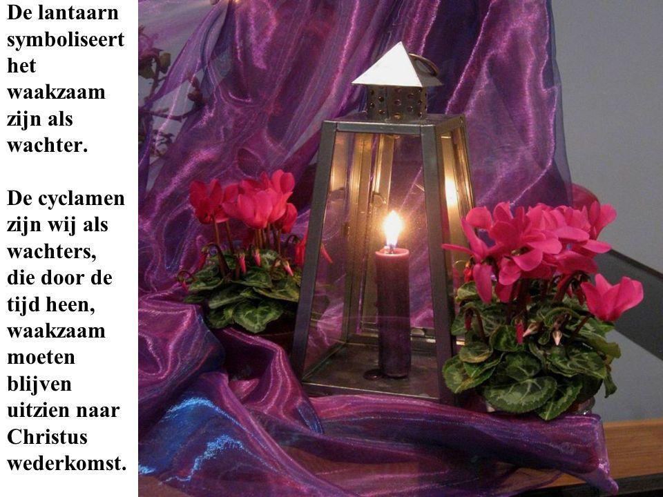 De lantaarn symboliseert. het. waakzaam. zijn als. wachter. De cyclamen. zijn wij als. wachters,
