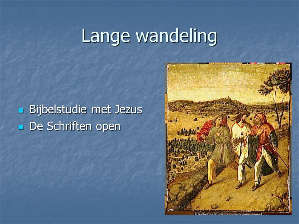 Lange wandeling Bijbelstudie met Jezus De Schriften open