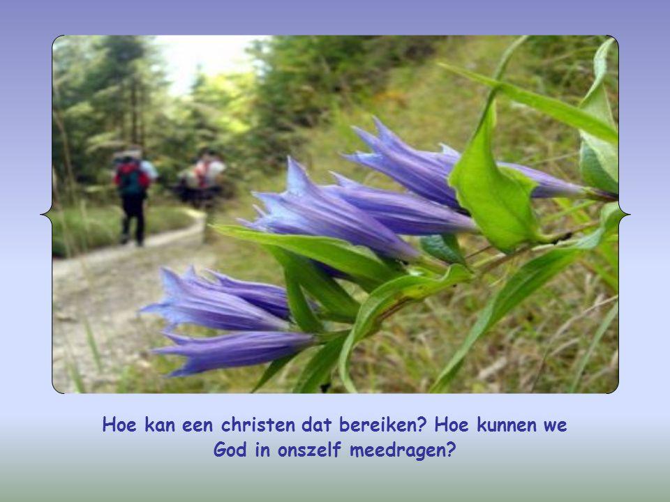 Hoe kan een christen dat bereiken