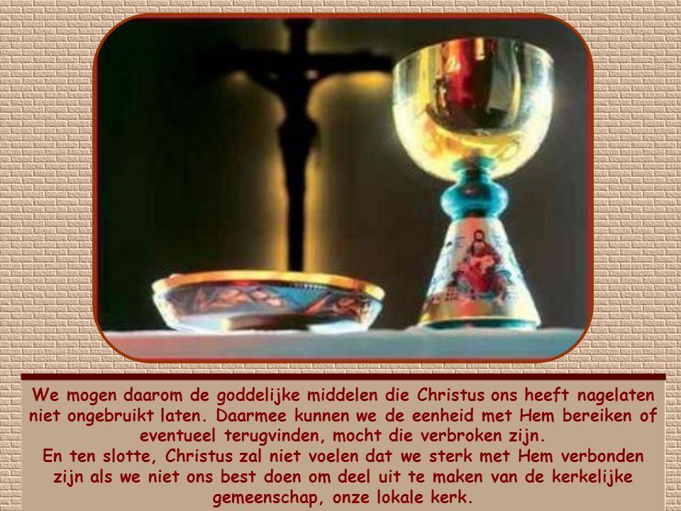 We mogen daarom de goddelijke middelen die Christus ons heeft nagelaten niet ongebruikt laten. Daarmee kunnen we de eenheid met Hem bereiken of eventueel terugvinden, mocht die verbroken zijn.