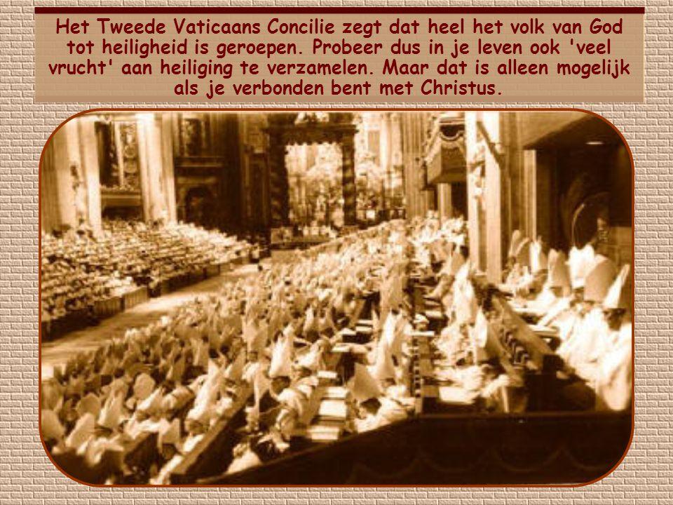 Het Tweede Vaticaans Concilie zegt dat heel het volk van God tot heiligheid is geroepen.