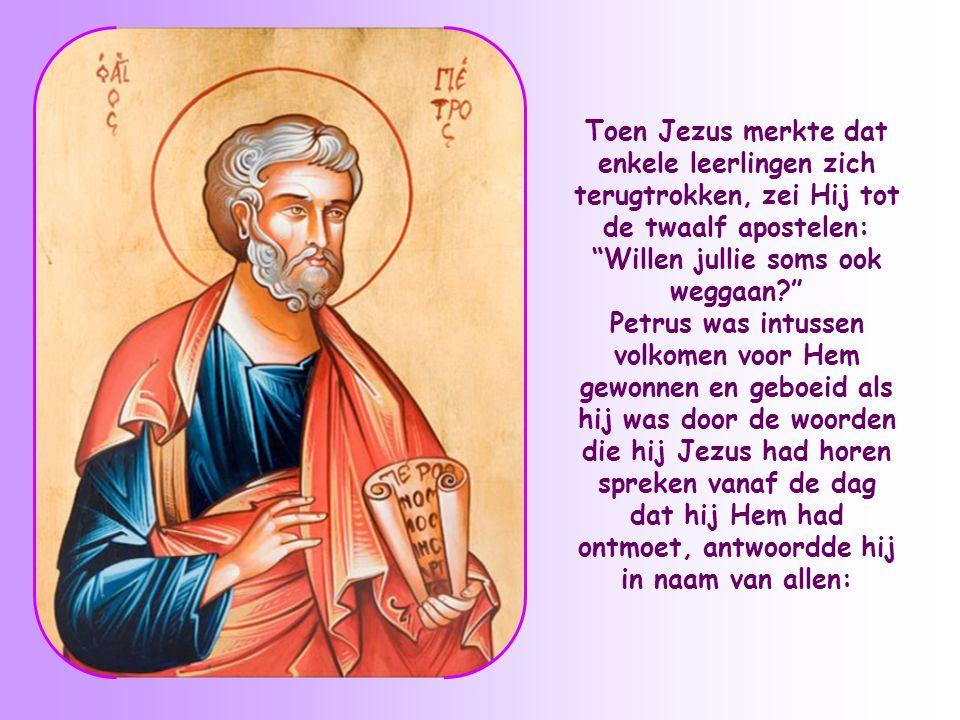 Toen Jezus merkte dat enkele leerlingen zich terugtrokken, zei Hij tot de twaalf apostelen: Willen jullie soms ook weggaan
