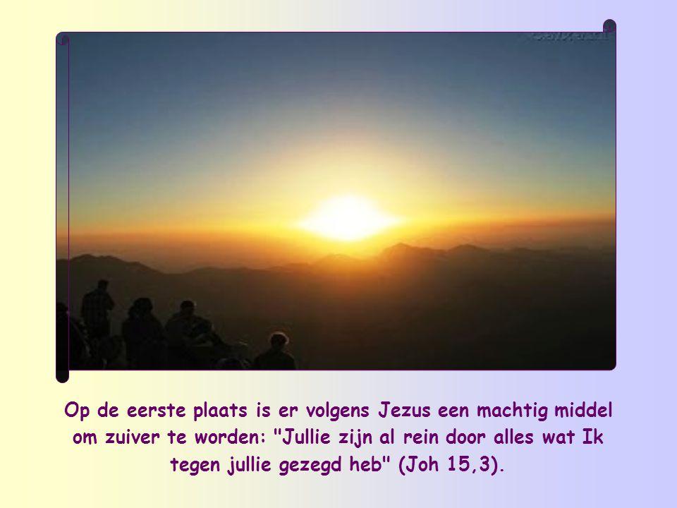 Op de eerste plaats is er volgens Jezus een machtig middel om zuiver te worden: Jullie zijn al rein door alles wat Ik tegen jullie gezegd heb (Joh 15,3).