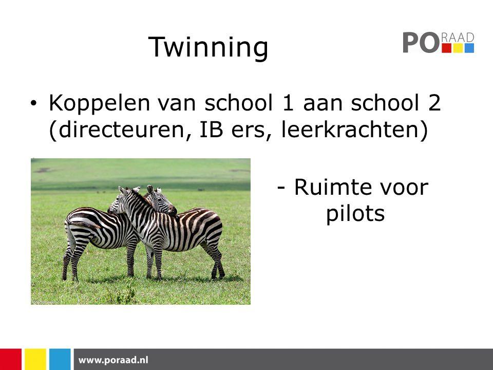 Twinning Koppelen van school 1 aan school 2 (directeuren, IB ers, leerkrachten) - Ruimte voor pilots.